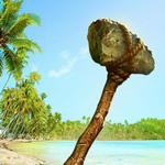 無人島生存