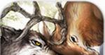 野生動物Online